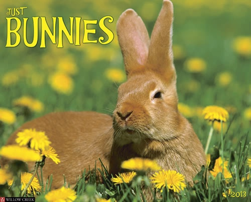 Buy Just Bunnies 2013 Calendar online at Megacalendars Cuter than cute softer than soft these twelve bouncing bunnies are pictures of pure innocence and charm Twelve bright .  http://www.megacalendars.com/Just-Bunnies-2013-Calendar-56923_p_13395.html