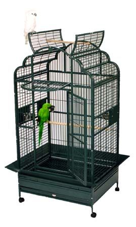 large bird cages 38 best images about large bird cages on 11621