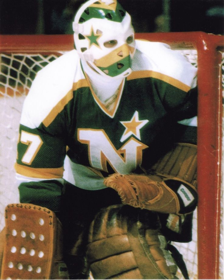 Gilles Meloche between the pipes for the Minnesota North Stars. One of the best damn uniforms ever.