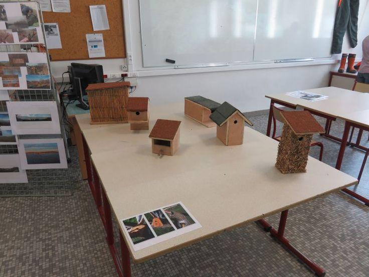Des nichoirs fabriqués par les élèves