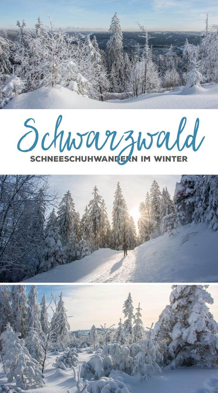 Schneeschuhwandern im Schwarzwald rund um Baiersbronn: Vom Mummelsee zum Schliffkopf. #schwarzwald #schneeschuhwandern #mummelsee #schliffkopf