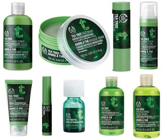 The Body Shop Tea Tree Oil Skin Care Line. I highly encourage anyone who struggles to maintain clear skin to try at least 1 or 2 of these products. Worked well on my skin.