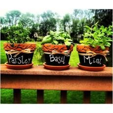 Herb Pots made with Painters® Paint Markers from @Elmer's