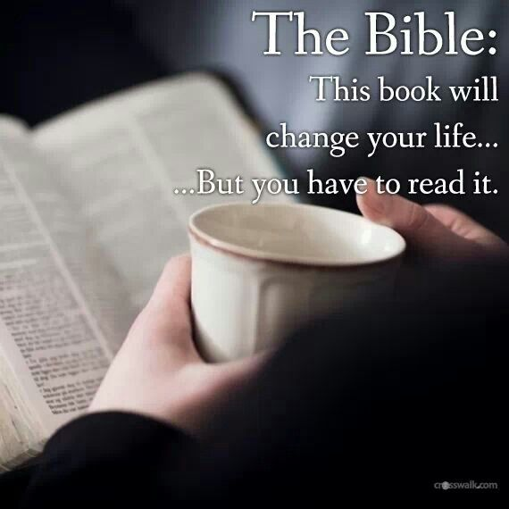 The Bible Have you tried everything else and can't get peace or joy or answers? Why not try reading the Bible? Rb