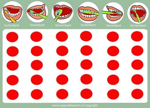 tandenpoets instructiekaart