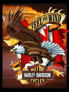 25 Harley Davidson Wallpaper Ideas Pinterest Wallpapers Screensavers Free Herley
