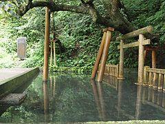 下鴨神社の境内にある、御手洗社と御手洗池
