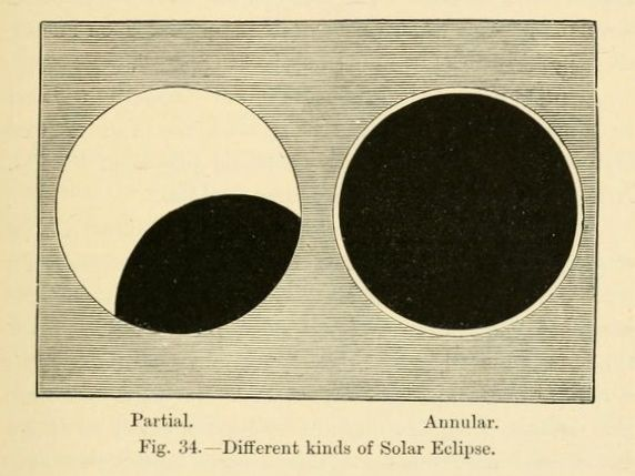 Different kinds of solar eclipse. Star-land. 1891.