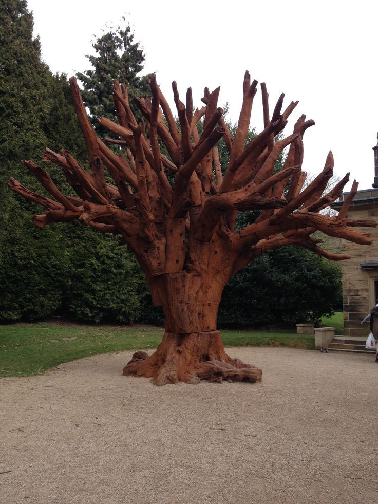 This is Ai Weiwei's Iron Tree in Yorkshire Sculpture Park. Always liked his work, and the texture and rust on this particular work looked very pleasing.