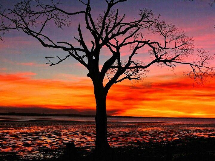 Photography by Hervey Bay Australia Through My Eyes
