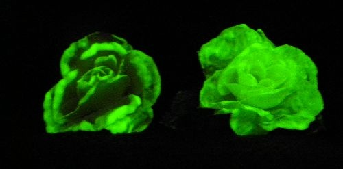 Glow in the dark flower!  Just paint with glow in the dark paint, turn off the light and photograph with a flash!