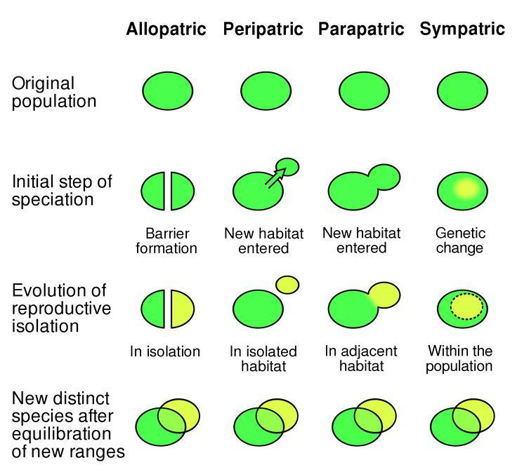 15 best Nature - Biology images on Pinterest Ap biology, Biology - cover letter biology