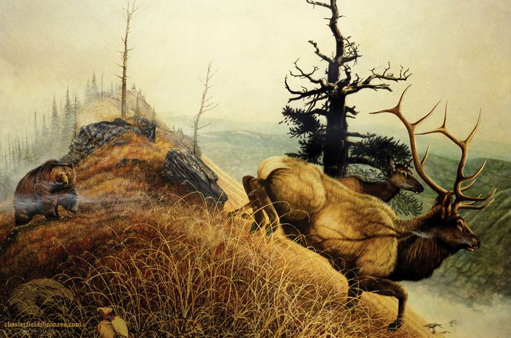 """Close Encounter""  Bear & Bull Elk Painting by artist Chester Fields"