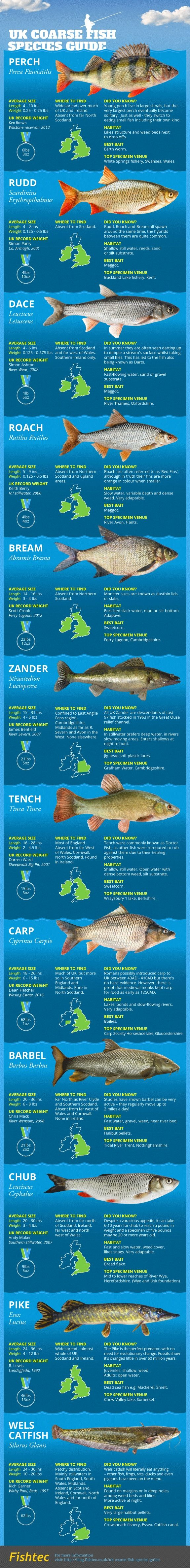 14 best fishing facts images on pinterest facts truths for Freshwater fish facts
