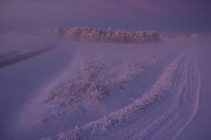 Tammikuussa 2010 oli talvi. Kuva: Tiina Rantakoski www.flickr.com/prhotos/trantakoski
