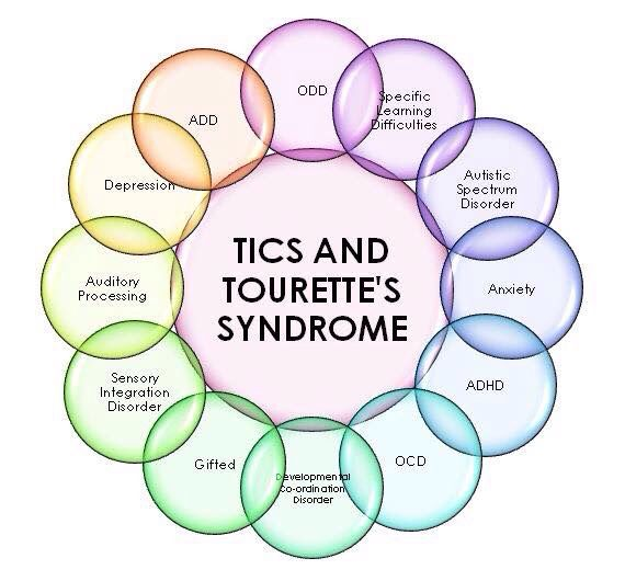 8 Best Images About Tourettes Syndrome On Pinterest Your Brain We And Neuroscience