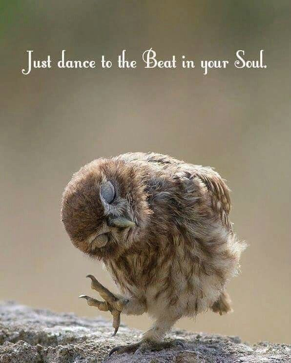 #Soul #Dance #Quote