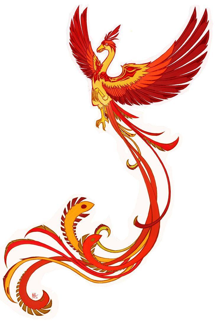 птица феникс картинка в векторе втором