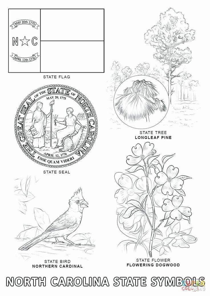 Arizona State Bird Coloring Page Lovely north Carolina