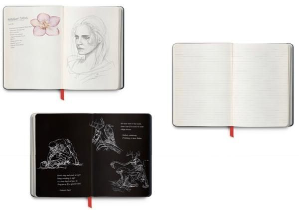 The Witcher Notebook - Collector's Edition in 2019 | Video