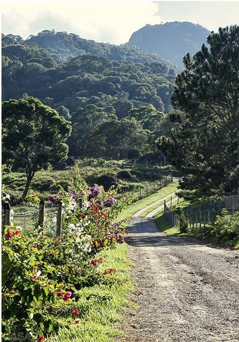 Paisagem rural no alto da Serra da Mantiqueira, estado de São Paulo, Brasil. Fotografia: Evelyn Müller. http://casa.abril.com.br/materia/casa-de-campo-encantadora-na-serra-da-mantiqueira#3