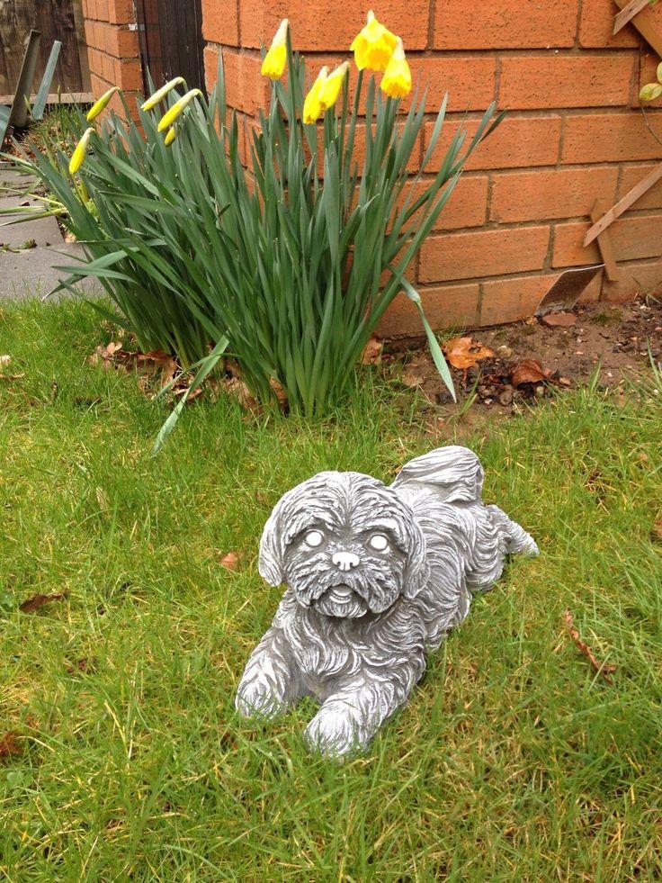 Shih tzu garden statue google search shih tzu decor for Decorative lawn ornaments