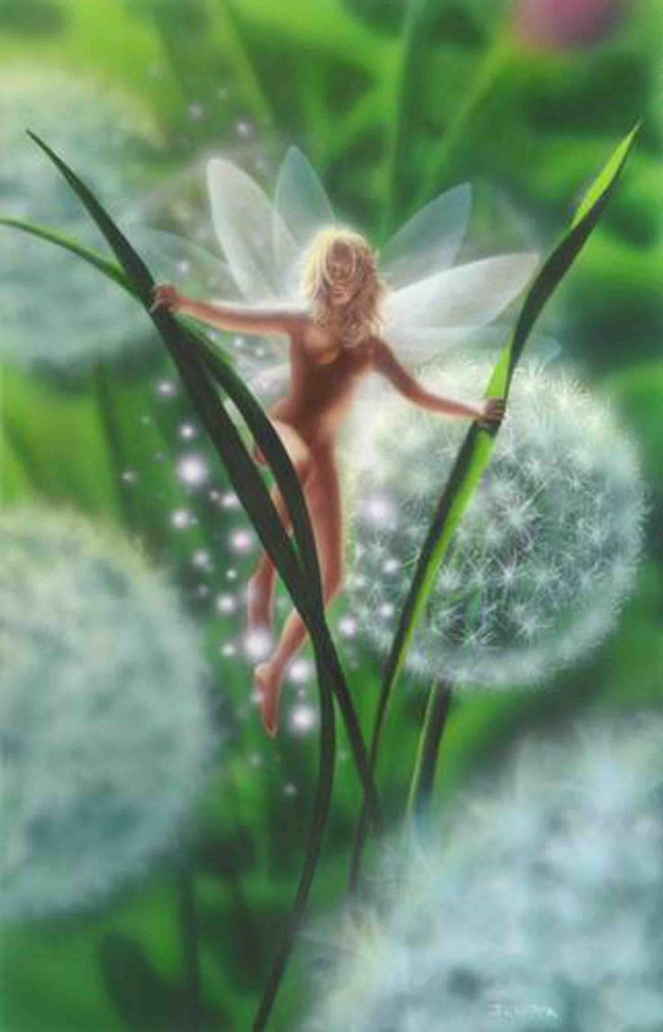 A faery amongst the dandelion wishes