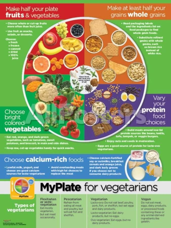 My Plate for Vegetarians Poster Prints Vegetarian types
