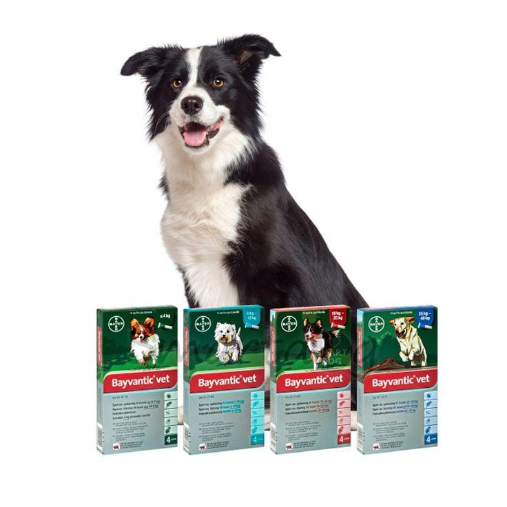 Bayvantic til hunde - Køb det billigt på smartdog.dk