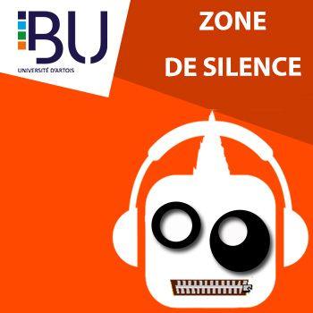 Zone de silence
