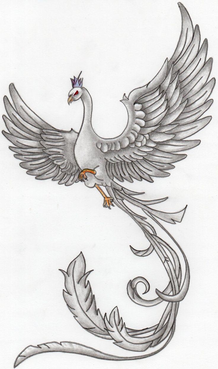 phoenix bird drawing - Vatoz.atozdevelopment.co