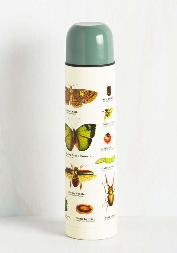 Insect-or Gadget Travel Bottle. Sure, this stainless steel travel bottle is great for toting drinks, but its utility doesnt end there! #multi #modcloth