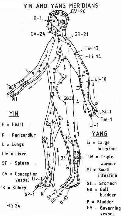 Meridianos Yin & Yang
