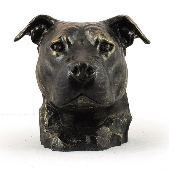 American Stafforshire Bull Terrier uncropped by ArtDogshopcenter