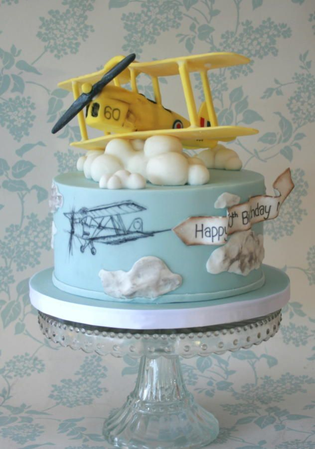 Tiger moth plane - Cake by Alison Lee