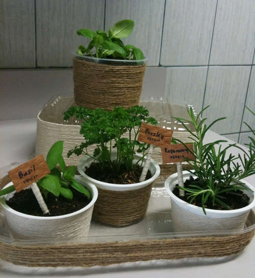 http://www.instructables.com/id/Mini-Indoor-Herb-Garden/?ALLSTEPS    Mini indoor herb garden from recycled plastic containers. Inexpensive way to start or keep herbs indoors.
