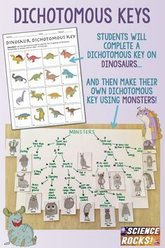 Your students will love this fun activity on dichotomous keys using dinosaurs and monsters!