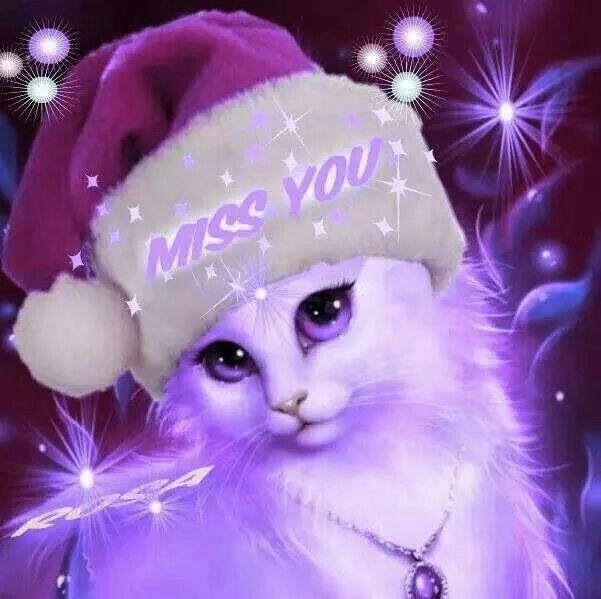 Miss you Cats Purple Cute kitten gif Shades of purple