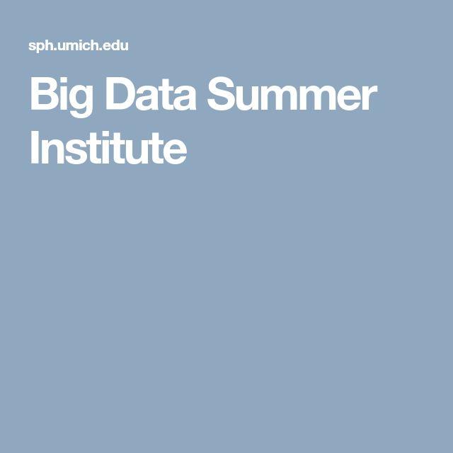 Big Data Summer Institute