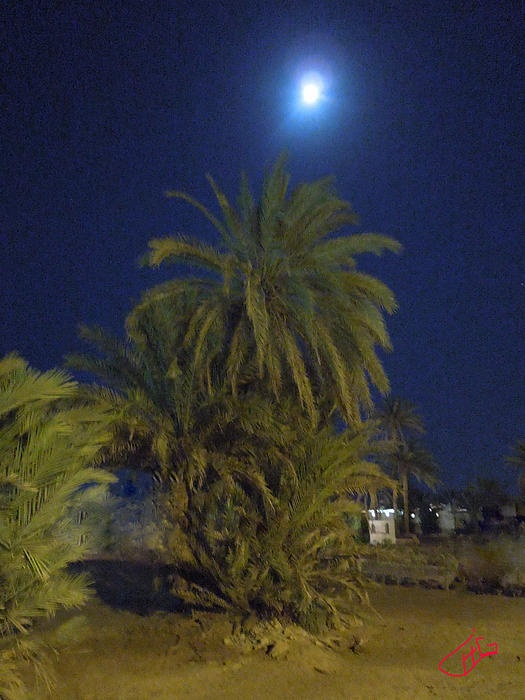 Nuweiba by Night Sinai Egypt Photography Colette H Guggenheim