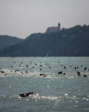 Crosswim of the Bay 3rd of August 2013 from #Balatonfüred to #Tihany #Balaton #Europe #Hungary #lake #swim #water #sport #activity