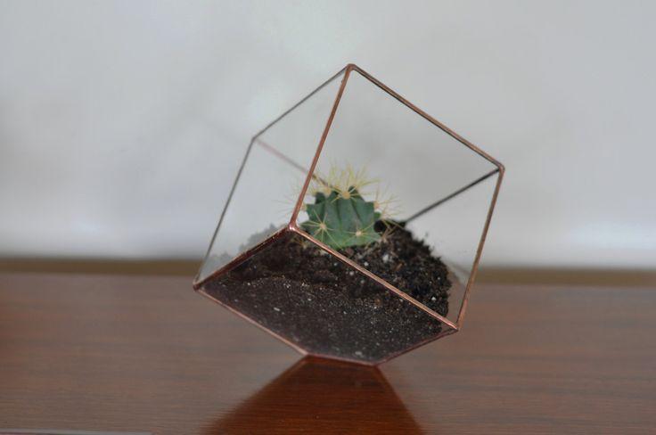 Earth Terrarium Kit, small cube glass planter in copper or silver color -- terrarium supplies -- eco friendly. $45.00, via Etsy.