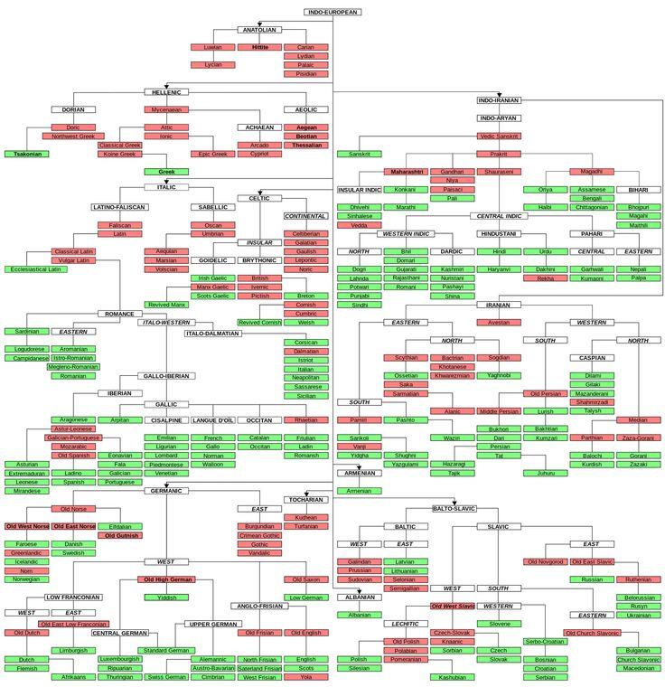 Les langues indo-européennes.