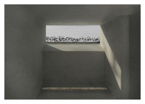 Visualization - Rhythms Birds view 2 - by Diana Lindboe