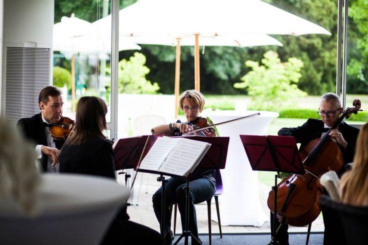 Kwartet smyczkowy – JALOUSIE oprawa muzyczna ślub, wesele