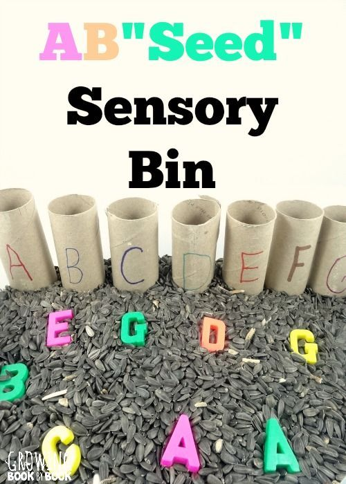 Alphabet activities to work on letter recognition with a sensory bin experience from http://growingbookbybook.com