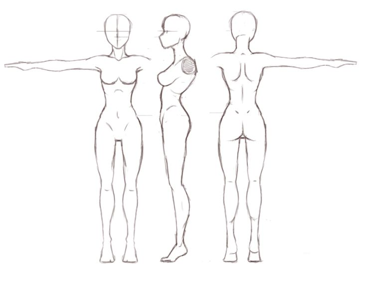 Pin By Jessica Fields On Dnd Body Template Body Outline Woman