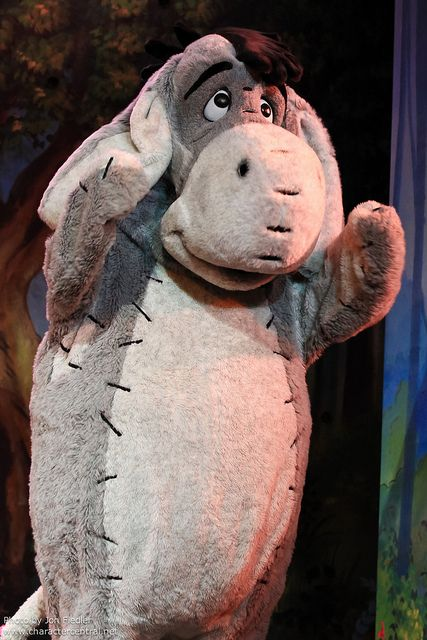 DLP Halloween 2010 - Winnie the Pooh and Friends too! | Flickr - Photo Sharing!