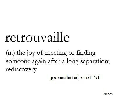 Retrouvaille (n.) The joy of meeting or finding someone again after a long separation; rediscovery.