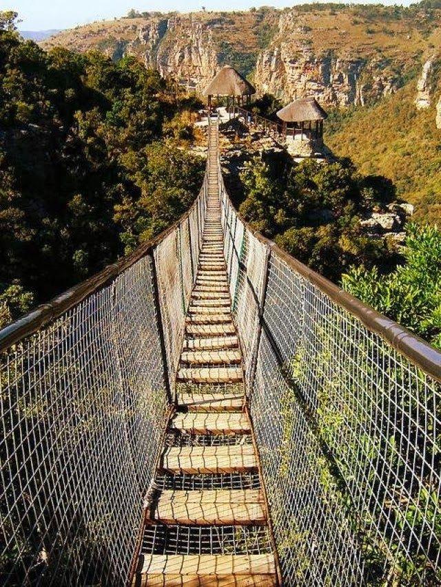 Oribi Gorge suspension bridge. Oribi Gorge is a canyon in southern KwaZulu-Natal, South Africa, just west of Port Shepstone.